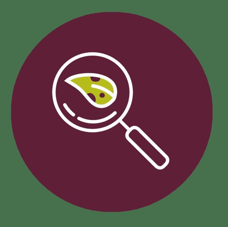 Diagnostic gratuit végétaux