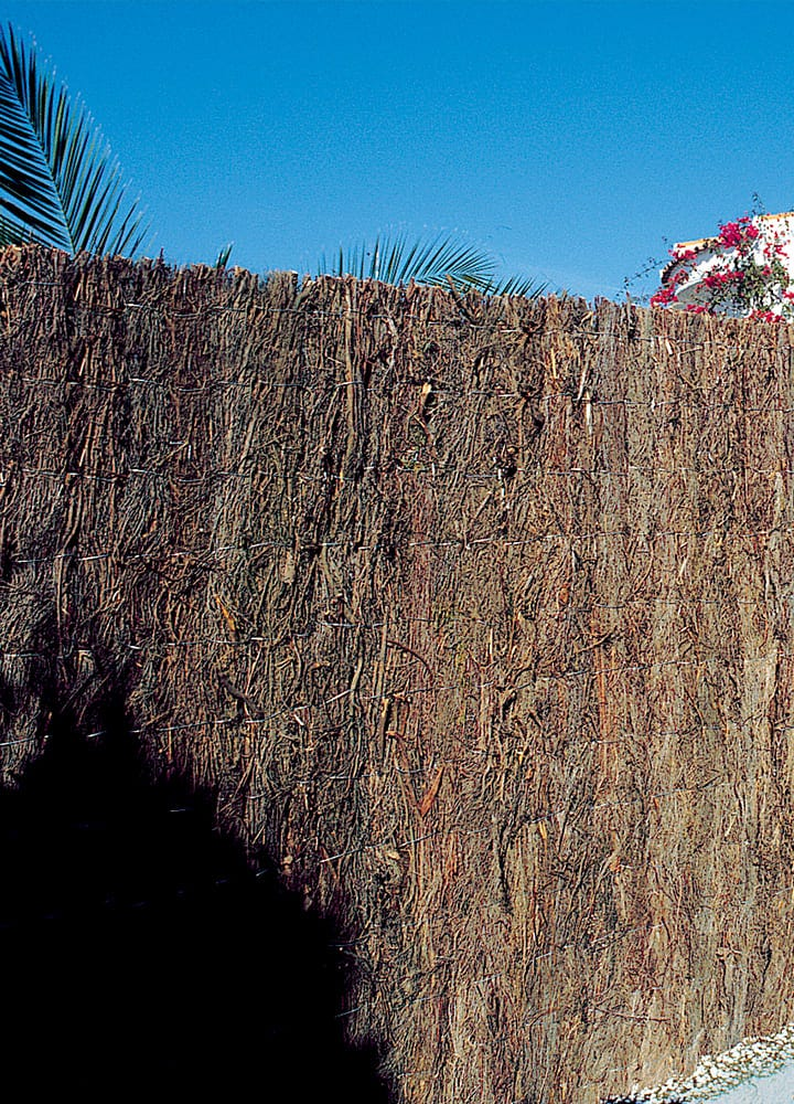brise vue bruyere espagnole pour jardin