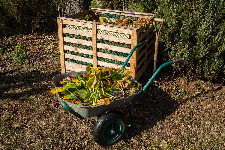 déchets du jardin pour composteur
