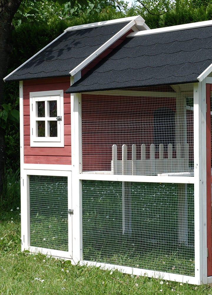 enclos poules avec grillage et fenêtre