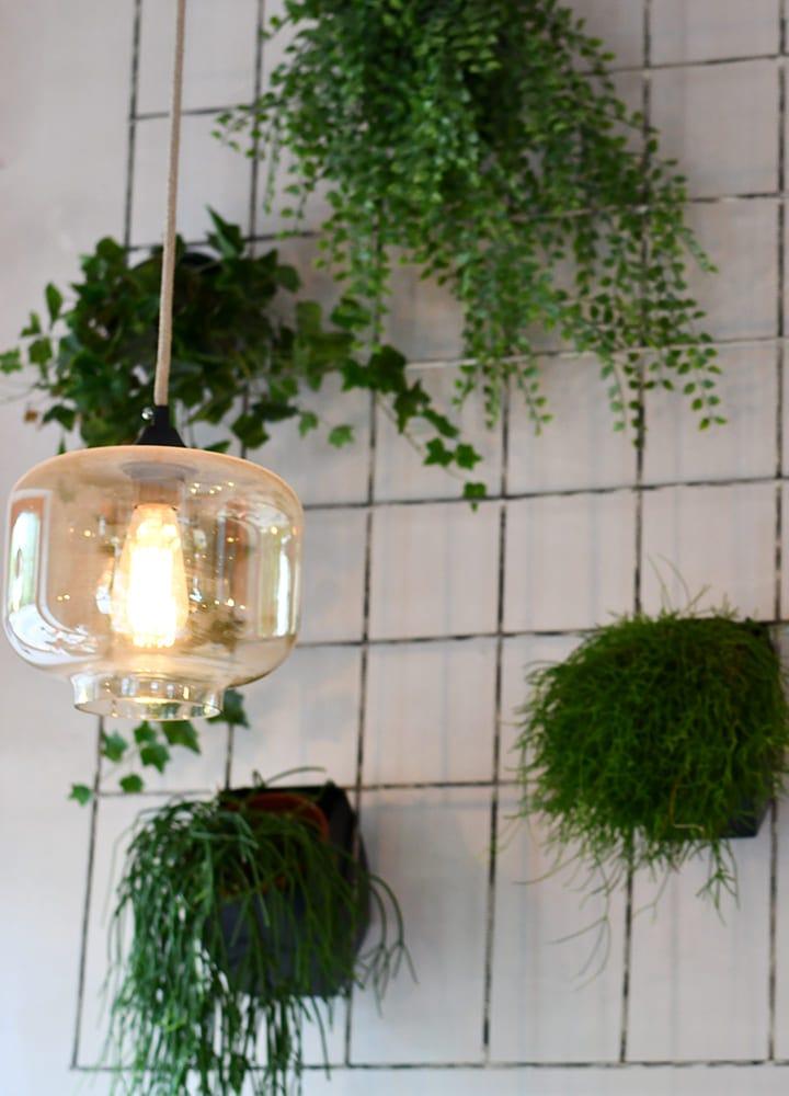 grille pour suspendre plantes