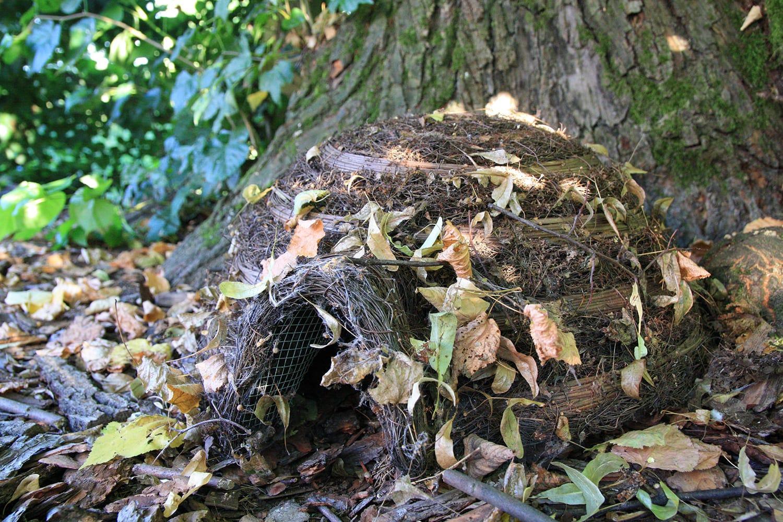 abri de jardin pour hérisson bois branches et feuilles