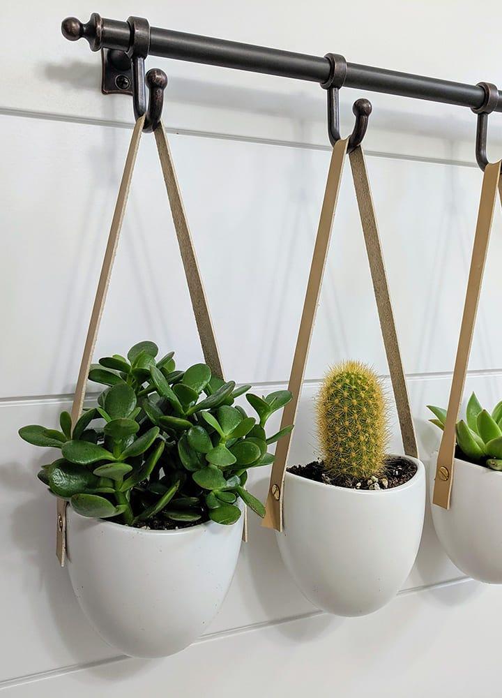rails décoratifs pour suspendre plantes