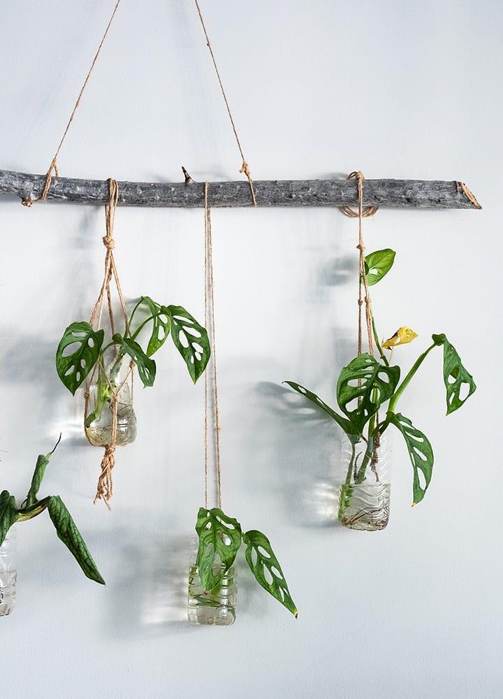suspension plantes avec macramé